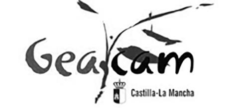 Geacam logo